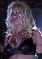 Pam Anderson Porn Movies photo 1