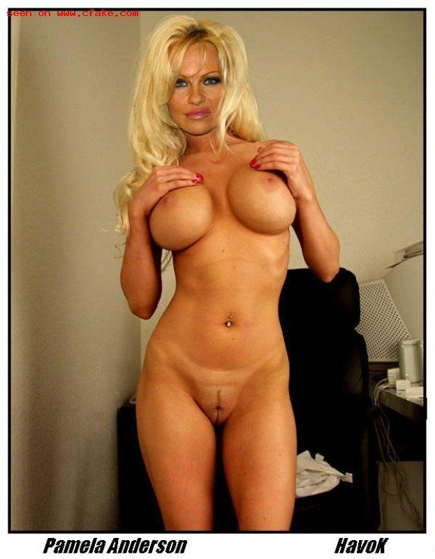 Pam Anderson Porn Movies photo 26